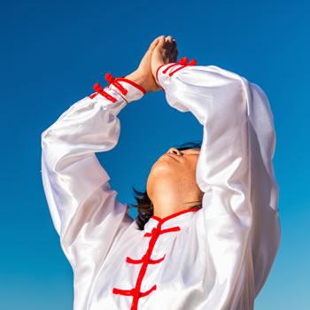 essencia do kung fu
